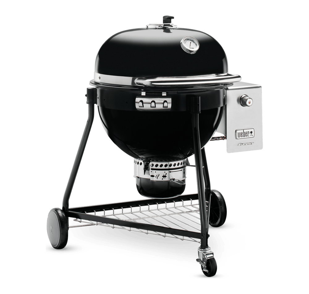 "Summit® Charcoal Grill 24"" View"
