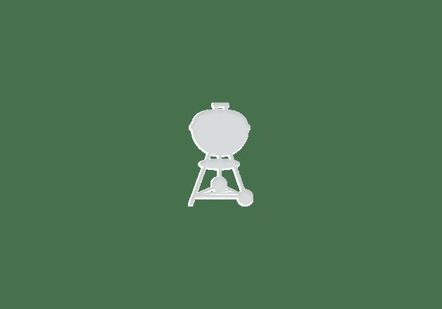 Weber® Q 2400 Elektrische barbecue met onderstel