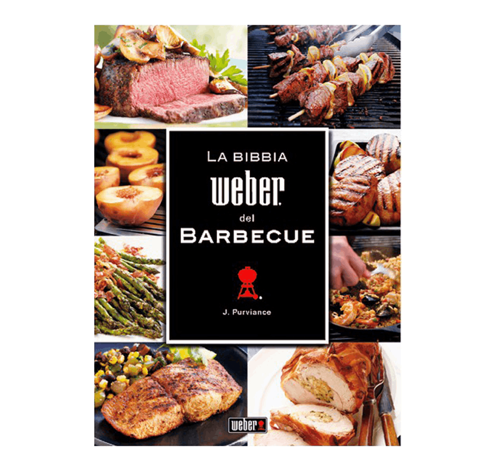 La Bibbia Weber del Barbecue View