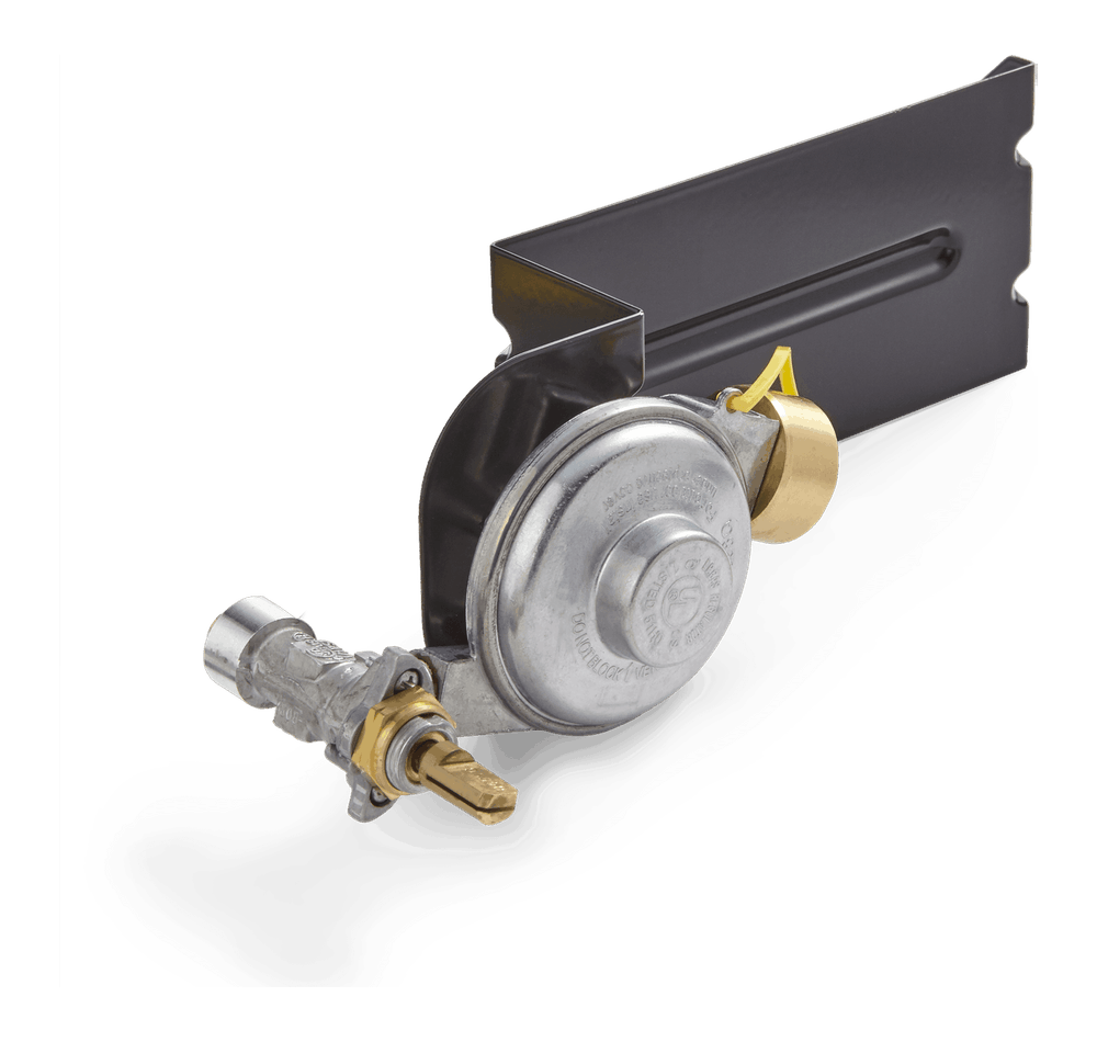 Gas Valve and Regulator Assembly image 1