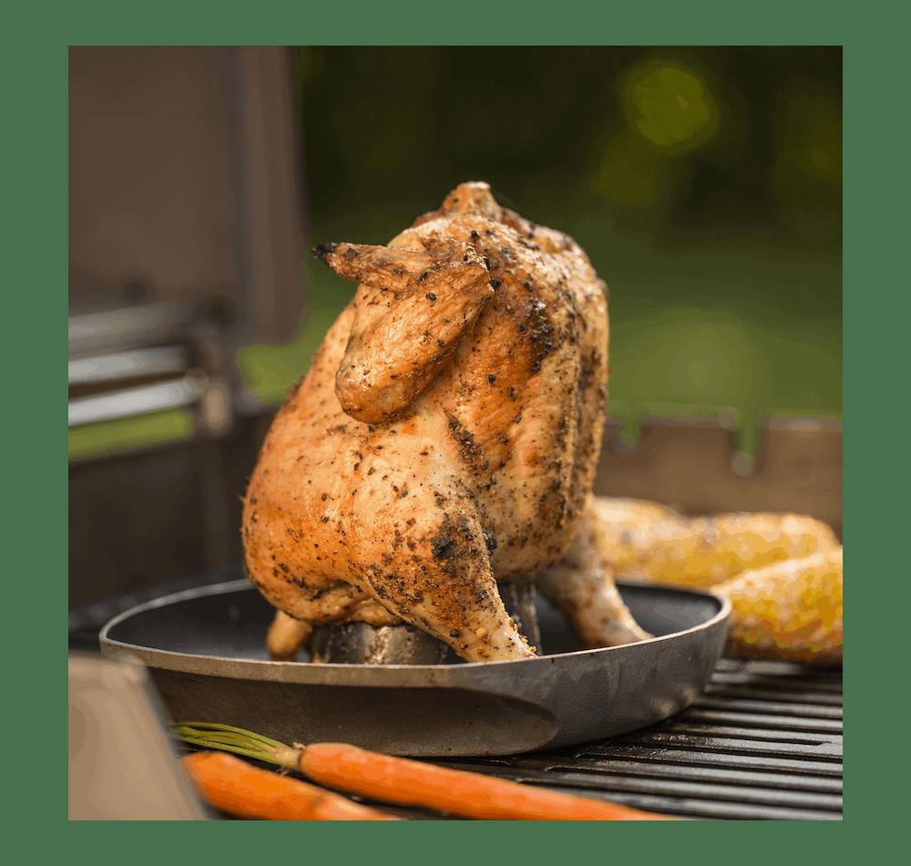 Soporte Deluxe para asar pollos View