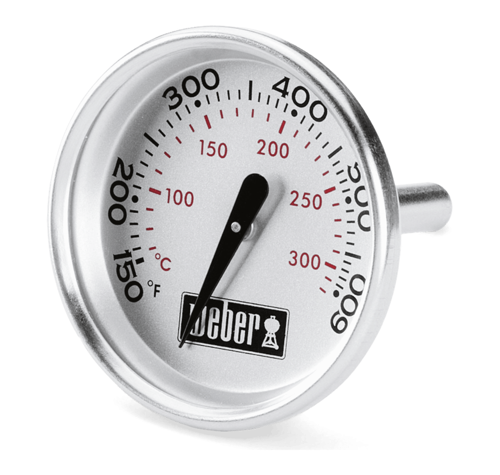 Ersatz-Thermometer View