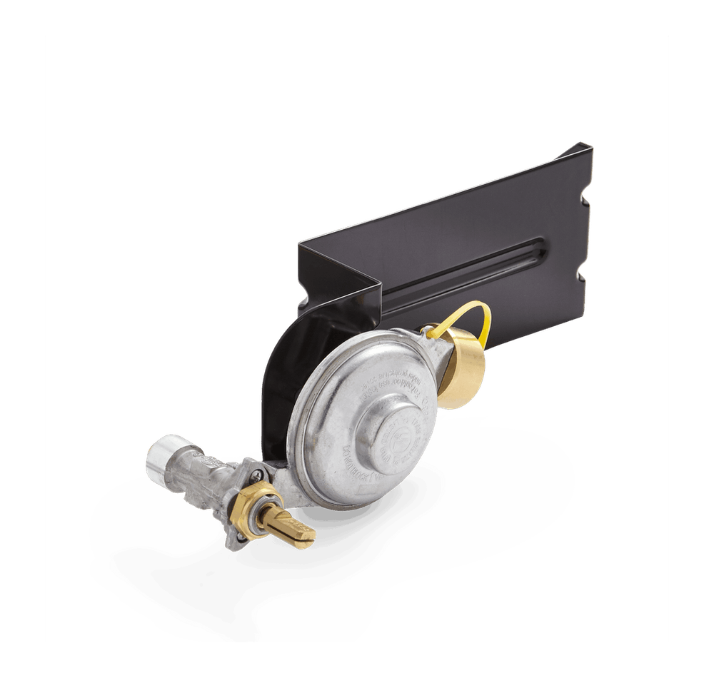 Gas Valve and Regulator Assembly View