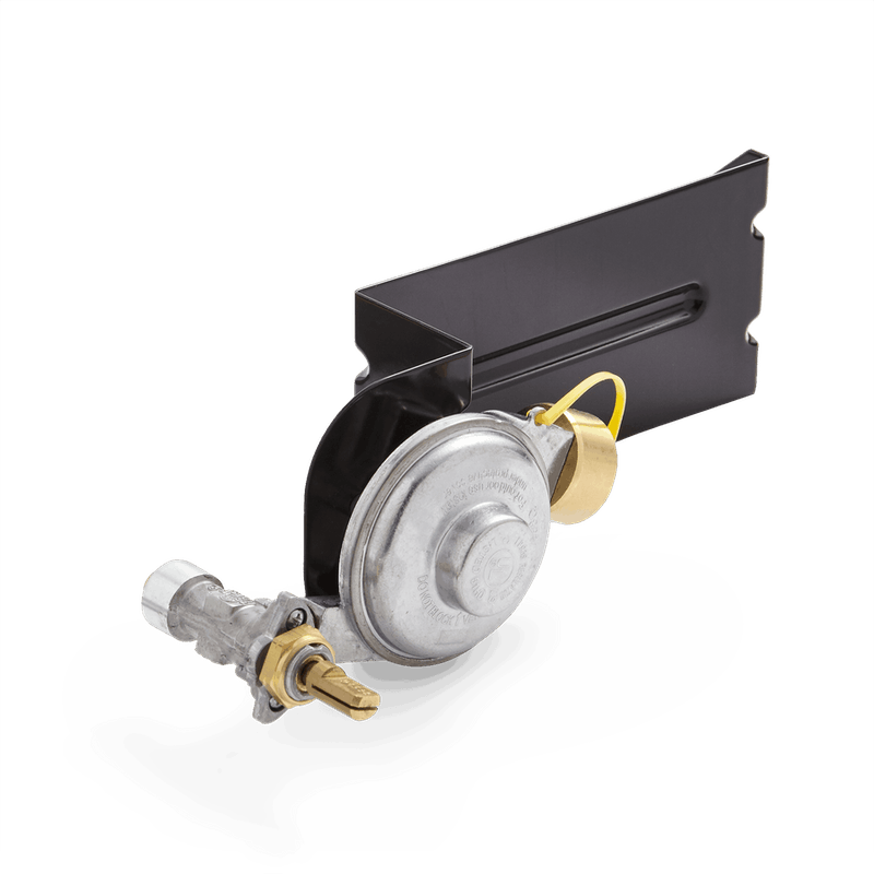 Gas Valve and Regulator Assembly - Weber Q 200/220 series image number 0