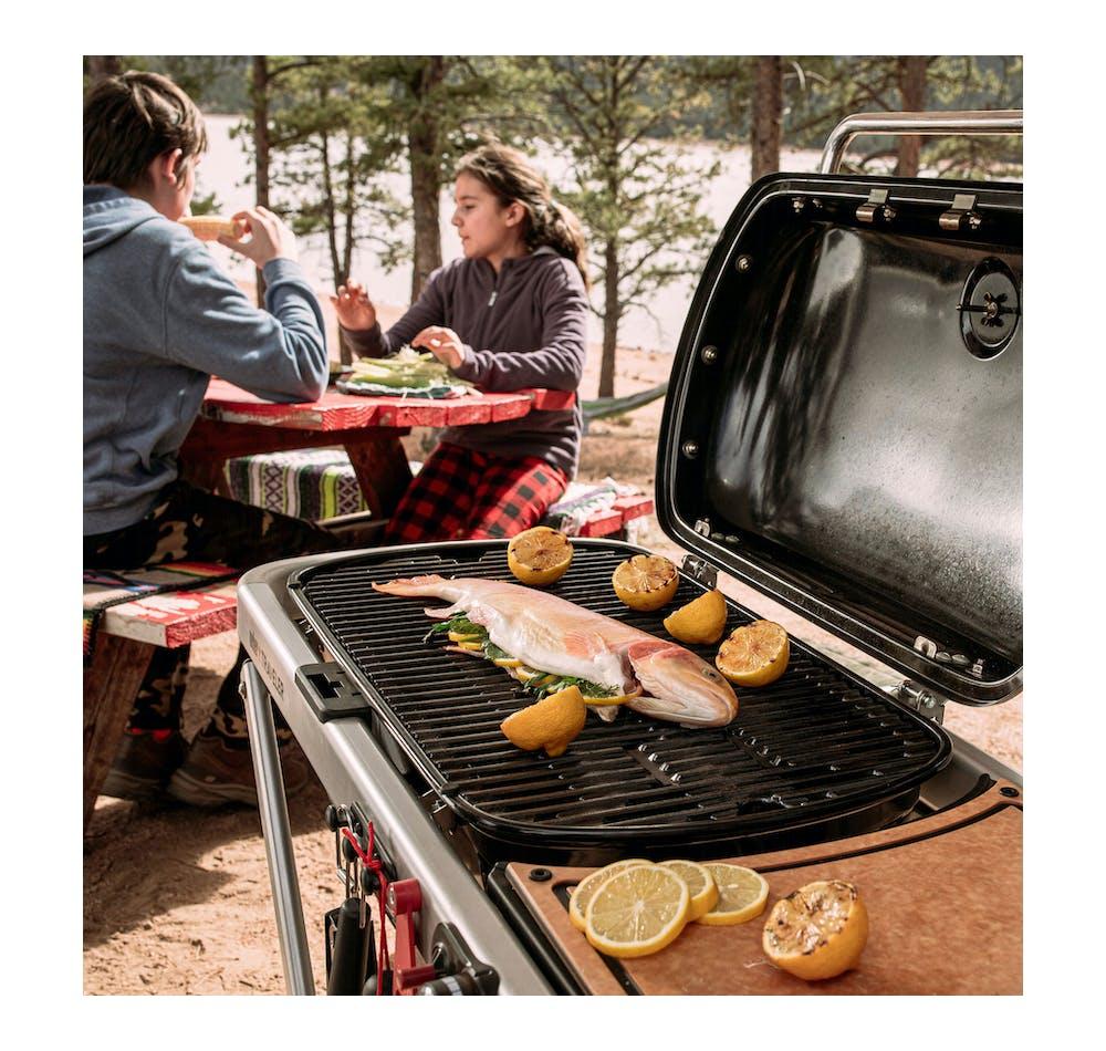 Barbecue à gaz Weber Traveler View