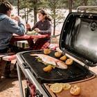 Weber Traveler image number 6